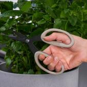 ЯККФРУКТ Ножницы для ухода за растениями, бежевый