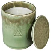 ОСИНЛИГ Ароматическая свеча в банке, Цветок хлопчатника и яблоневый цвет, зеленый коричневый, 10 см