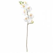 СМИККА Цветок искусственный, Орхидея, белый, 60 см