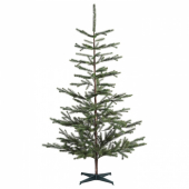 ВИНТЕР 2020 Растение искусственное, д/дома/улицы, рождественская елка зеленый, 205 см