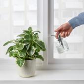 СЕСАМФРЁН Опрыскиватель для растений, прозрачное стекло, 25 сл