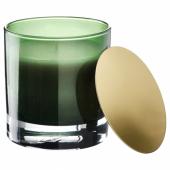 ОМРОДЕ Ароматическая свеча в стакане, Сосна и мох, зеленый, 10 см