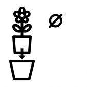 КАКТУС Комнтн раст в горшке, кактус, различные растения, 6 см