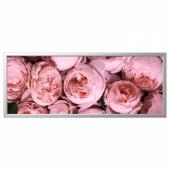 БЬЁРКСТА Картина с рамой, Розовый пион, цвет алюминия, 140x56 см